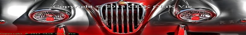 cropped-1120x160_e000210logo-nr-800x530-banner-crop-v2-feb-11-2013wm1.jpg
