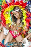 Photo from the official Launch of the 2015 Scotiabank Toronto Caribbean Carnival. Photo credit Vincent Bania