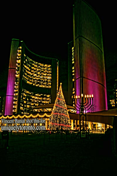 Photo of 2015 Nathan Phillips Square. Toronto Christmas Tree. Photo credit Vincent Banial