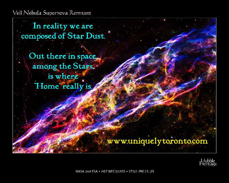 "quote ""IN reality we are composed of Star Dust. Out there in space, among the Stars is where Home really is"" by Vincent Banial"